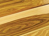 HD Nature Hickory